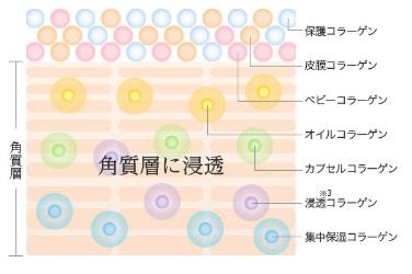 7つのコラーゲンが配合